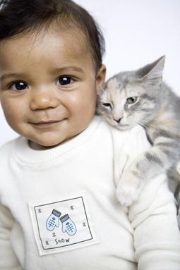 Organic Baby/Toddler image